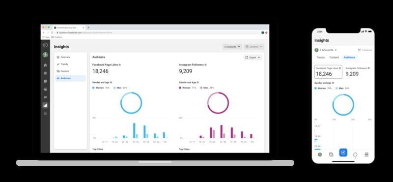 Insight Facebook Business Suite
